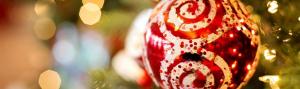 Menú Navidad D'Coysa